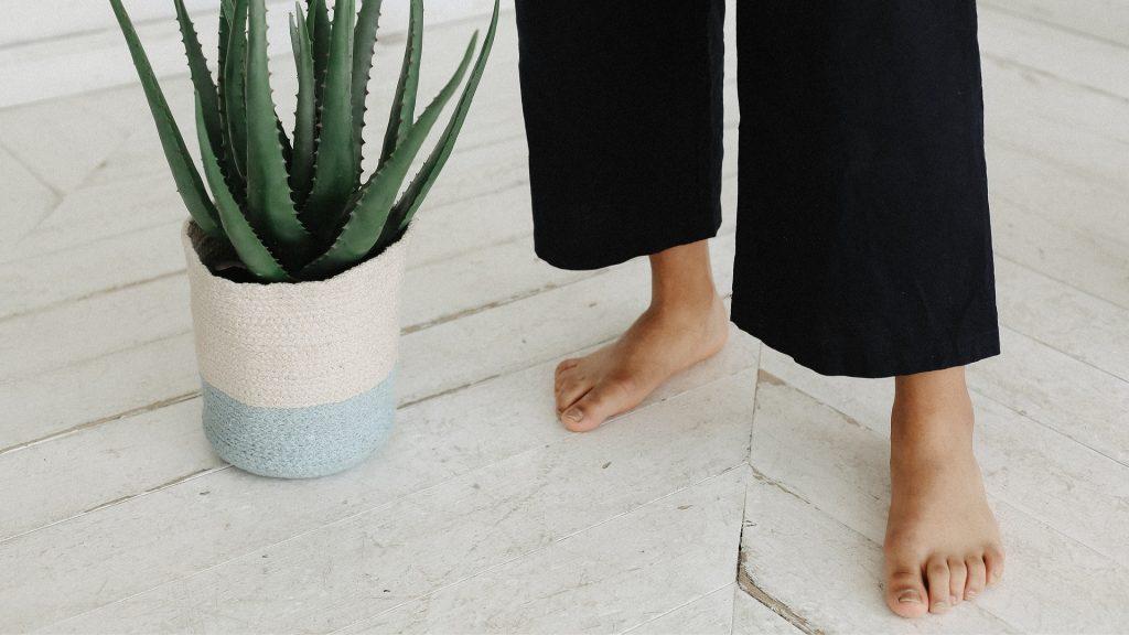 holvoet platvoet masterclass FeetForward